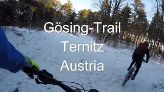 Video Shredding Trail In Austria - Gösing, Ternitz download MP3, 3GP, MP4, WEBM, AVI, FLV November 2017