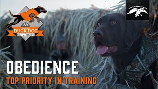 Teaching Your Pup to Sit and Place | Duck Dog University Ep.6