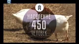 Местные жители 12 канал омск