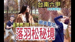 [台南新秘境]六甲落羽松林 不用到國外也看得到的風景