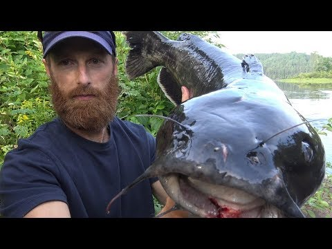 Catch and Cook Clean {Graphic} HUGE CATFISH!!! | OVERNIGHT CAMP and NIGHT FISHING!