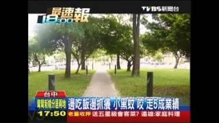 台中市美術館綠園道,充滿異國風餐廳,因為一條綠陰步道,每到假日總是...
