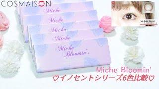 紗栄子さんがイメージモデルの大人かわいいナチュラルカラコン Miche Bl...