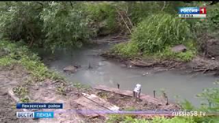 Река в Старой Каменке под Пензой обрела молочный цвет: гибнет рыба