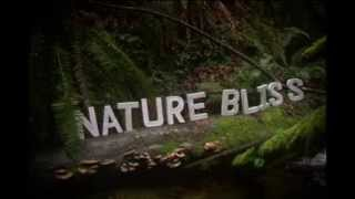 Nature Bliss Inc. intro   ~ art, music and happiness ~
