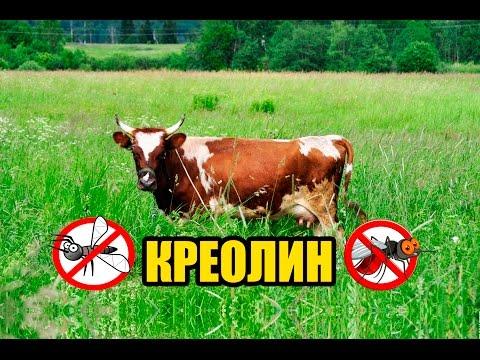 Защита животных от кровососущих насекомых. КРЕОЛИН. Репелленты