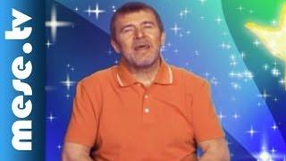 Nagy Bandó András - Holló együttes: Nyolc Pók (mese, dal gyerekeknek)