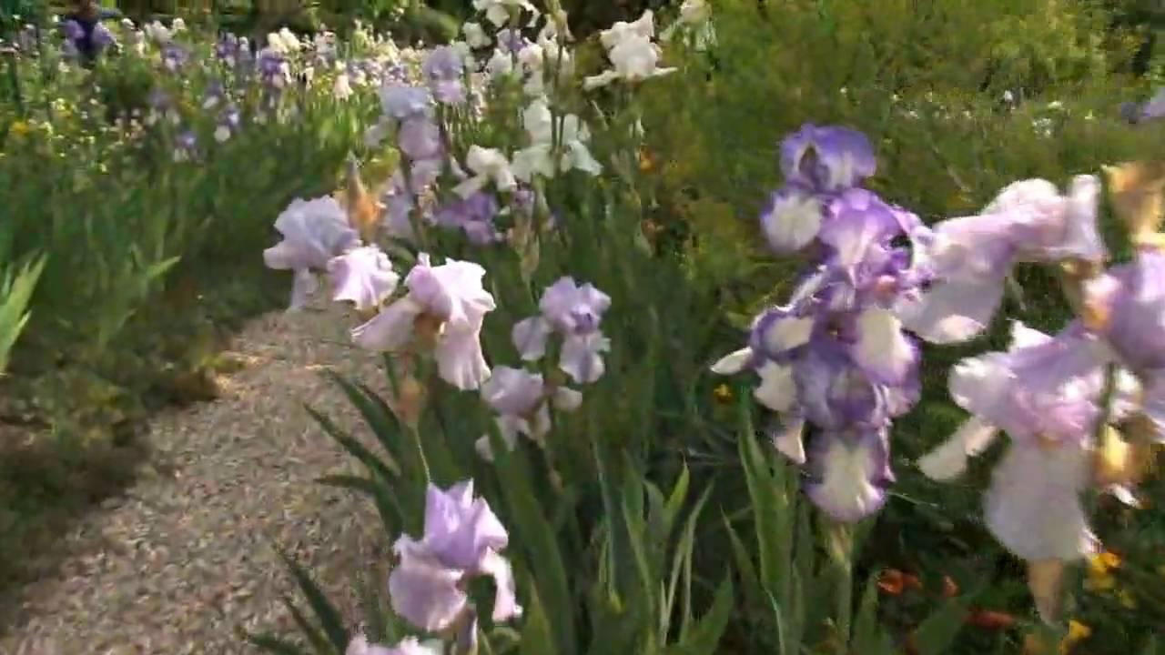 Visite Virtuelle Dfi Futur  Le Jardin De Giverny Youtube