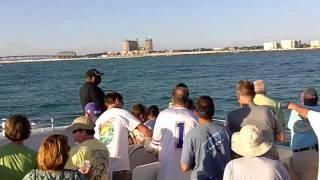 Destin, FL Boat Ride - Dolphins And Beach