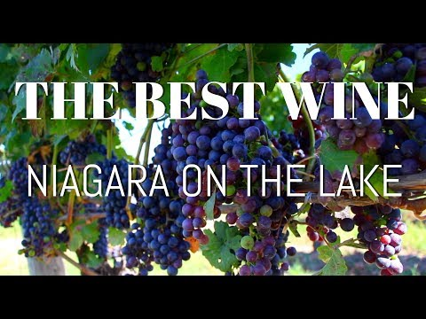 BEST WINERIES IN NIAGARA ON THE LAKE
