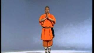 Cours de kung fu en ligne - Les pratiques de l