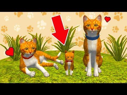 СИМУЛЯТОР КОТА и КОШКИ #6 Родился котенок