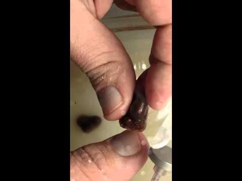 Cutting Fire Agate