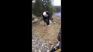 Swedish Bachelor Party Goes Epic Fail