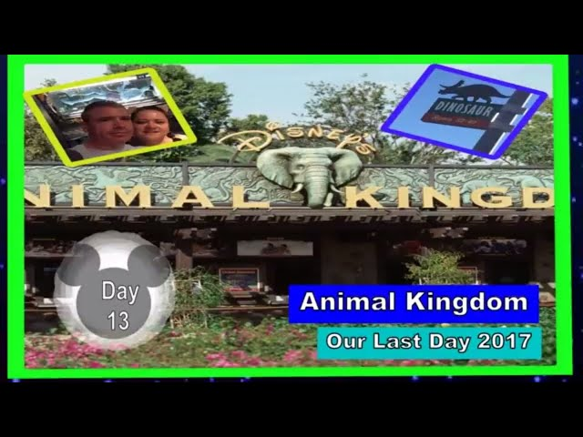 Day 13 Animal Kingdom Our Last Day 2017