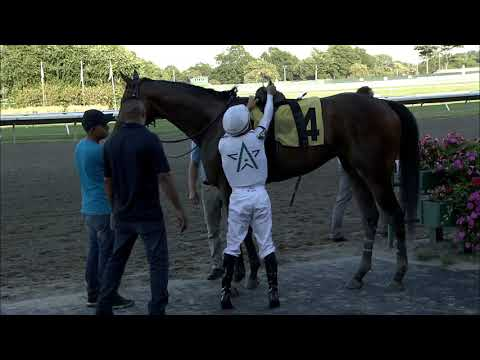 video thumbnail for MONMOUTH PARK 8-31-19 RACE 12