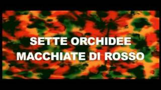 Sette Orchidee Macchiate di Rosso (Trailer Italiano)