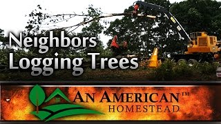 A nearby land owner is logging a large tract of land nearby. They a...
