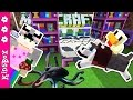DOG RESORT AND OLYMPIC TRAINING CENTER ❑  MINECRAFT PE Preview