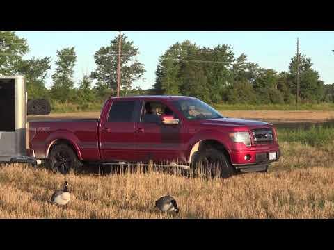 SEPTEMBER START UP - Michigan Goose Hunting