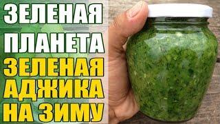 Самая вкусная зеленая аджика на зиму