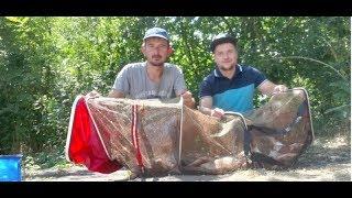 Рыбалка на Дону. Аксайский район. Ольгинская. Лайф хак со светлячком