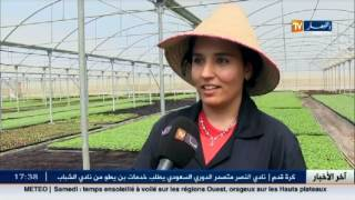 مستغانم: مشتلة البستان.. نموذج لمزرعة بتقنية التلقيم توفر طاقة انتاجية لمليوني وحدة..
