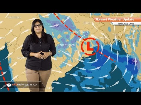 Weather Forecast for Aug 16: Heavy rains in West Bengal, Odisha, Jharkhand, Rain in Delhi