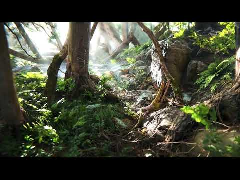 Beautiful Nature CGI Audio-Visual Composition (Overdubbed/Edited by Solid Spirit)