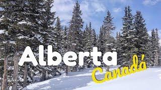 LLEGANDO A ALBERTA, CANADÁ 🇨🇦 #1 ︱ De Viaje con Armando
