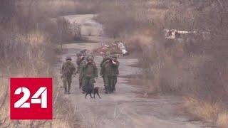 Две зеленые ракеты: ополченцы ДНР и украинские военные готовы к разведению сил - Россия 24