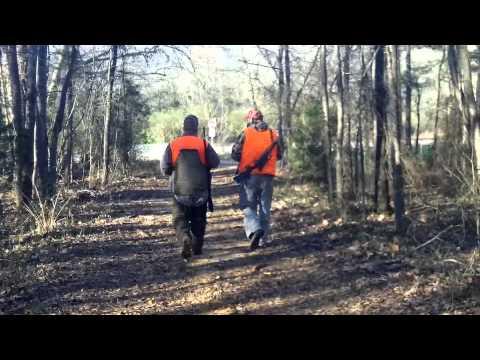 South Carolina Squirrel Hunting