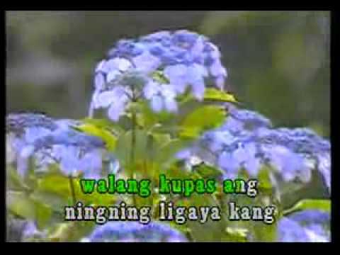 VIDEOKE Donna Cruz Hulog Ng Langit