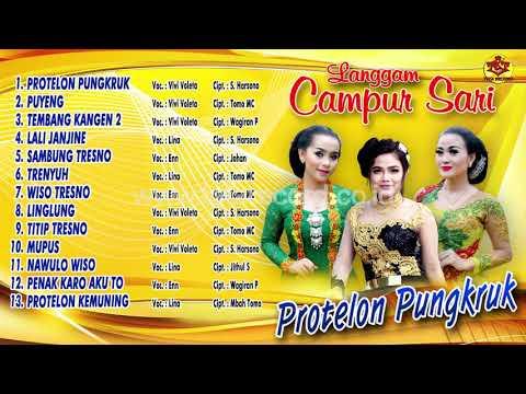 Langgam Campursari | Protelon Pungkruk ( Official Audio Video )