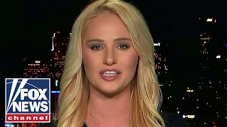 Tomi Lahren on Dems challenging Trump's national emergency