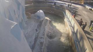 Кай и Герда в Новосибирском зоопарке