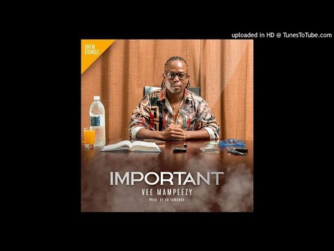 VEE MAMPEEZY - IMPORTANT ( prod by Dr Tawanda)