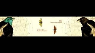V.I.C.A.R.I. - TOREALISE - SOFT MACHINATIONS LP - COUNTERCULTURE 001