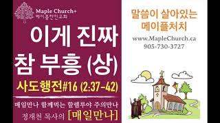 매일만나#16 이게 진짜 참 부흥 (사도행전 2:37-42) | 정재천 담임목사 | 말씀이 살아있는 Maple Church