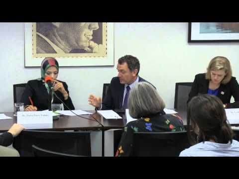 Egypt's Elections: Justice, Gender, and Human Rights - Panel