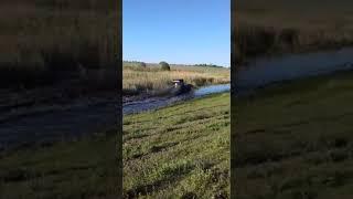 трактор мтз турбо бизон трек шоу 2018 берём пруд