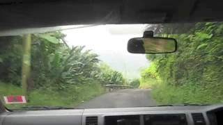 Rainforest Ride Thumbnail