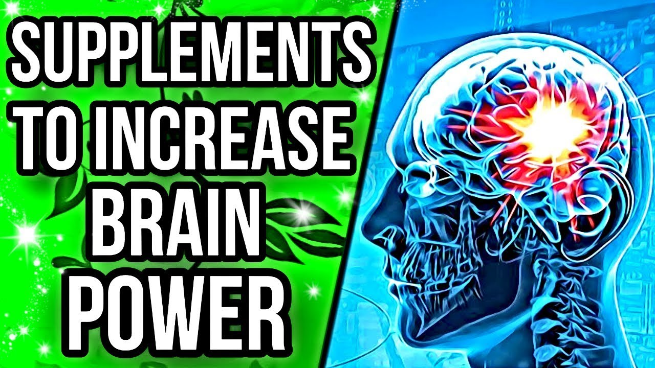 Study Links Dietary Supplement To Brain >> Top 5 Supplements For Increasing Brain Power Youtube