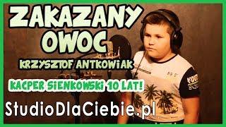 Zakazany owoc - Krzysztof Antkowiak (cover by Kacper Sienkowski)