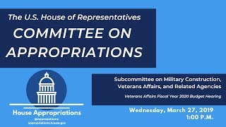 Veterans Affairs FY 2020 Budget Hearing (EventID=109159)