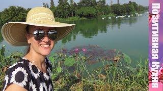 КАК ЖИВУТ ИНОСТРАНЦЫ во Вьетнаме!   VIETNAM VLOG ON RUSSIAN