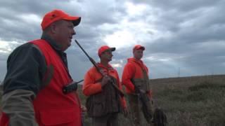 Iowa Pheasant Hunt