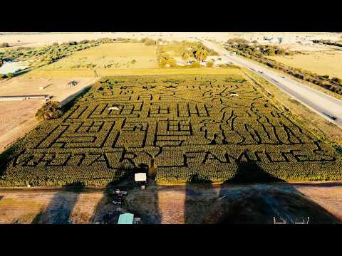 Drone Footage Above Corn Maze In Texas!