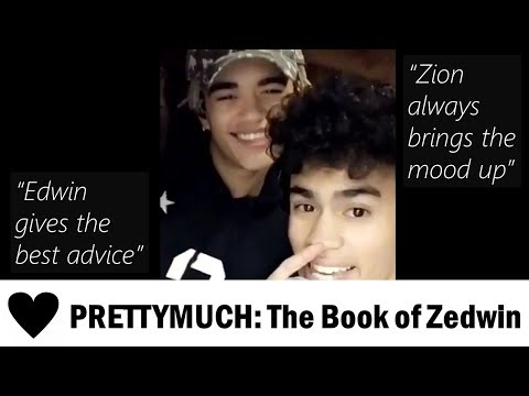 PRETTYMUCH Chronicles #6: The Book of Zedwin (Zion and Edwin)