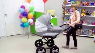 Детская коляска 2 в 1 Alis Monica classic
